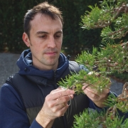 Here is a link to an article about me and my work with bonsai published in the l...